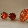,,Chihlimbar 2″, set compus din inel si cercei argintati, cu chihlimbar; inelul este reglabil, iar tortitele cerceilor sunt inchise; chihlimbarul cerceilor este un ton mai inchis decat nuanta inelului; mai este disponibil doar inelul, 40 lei