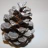 Conuri de brad, argintiu, pret per buc; VANDUTE